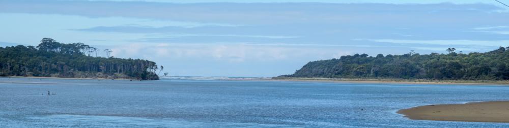A shoot of the estuary of the Tahakopa river