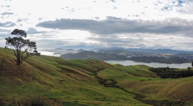 Panorama0110copy